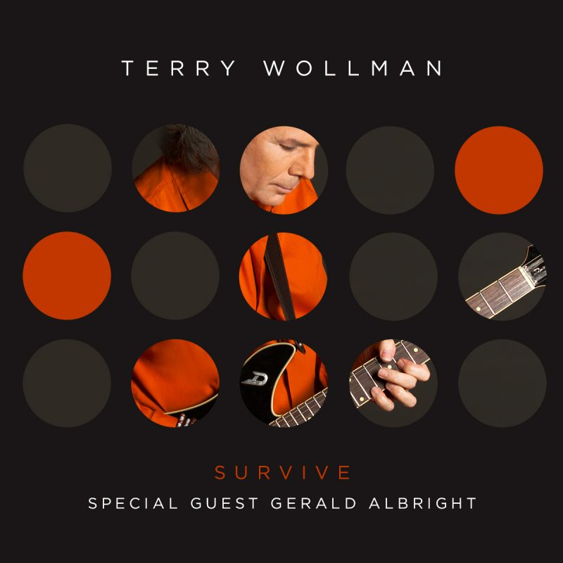 Terry Wollman - Survive